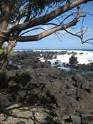 Road to Hana: Keanae Peninsula