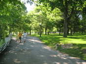 American Falls Park